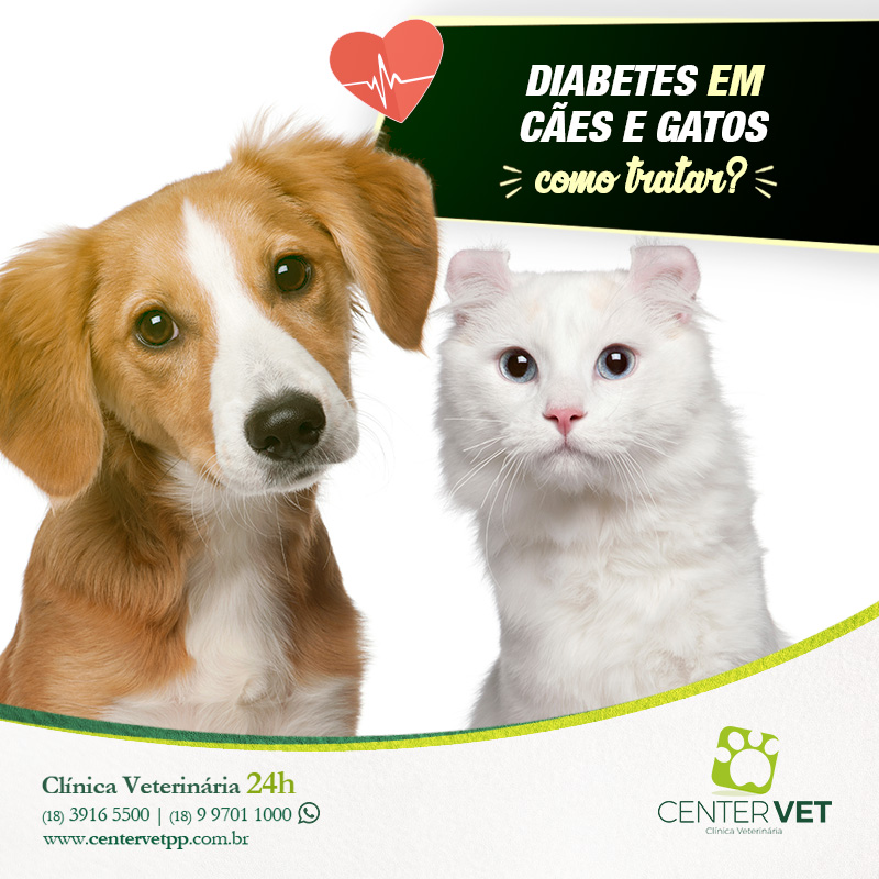 laboratorio caes veterinaria clinica Veterinaria 24 horas Presidente  Prudente 28c8e00395a